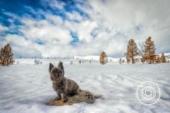 Hikdography_Outdoorshooting-003