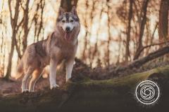 Hikdography_Outdoorshooting-008