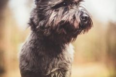 Hikdography_Outdoorshooting-012