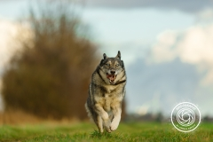 Hikdography_Outdoorshooting-020