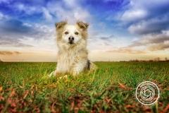 Hikdography_Outdoorshooting-021