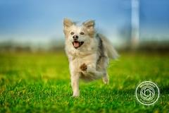 Hikdography_Outdoorshooting-022