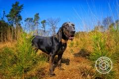 Hikdography_Outdoorshooting-025