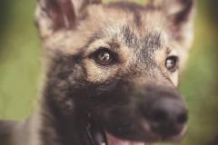 Hikdography_Outdoorshooting-045