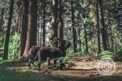 Hikdography_Outdoorshooting-049