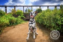 Hikdography_Outdoorshooting-051