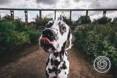 Hikdography_Outdoorshooting-052