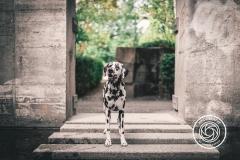 Hikdography_Outdoorshooting-054